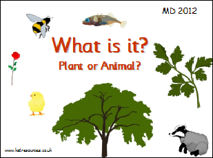 ... Worksheets Free. on characteristics of living things ks1 worksheet