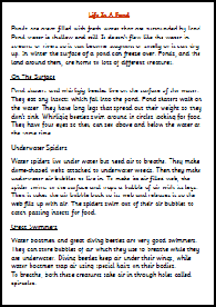 Persuasive Essay About Early Marriage